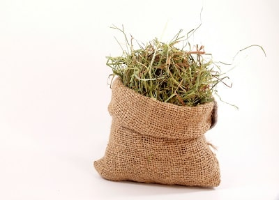 Hide gift card in a bag full of hay