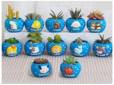 zodiac mini planters