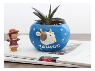 zodiac planter