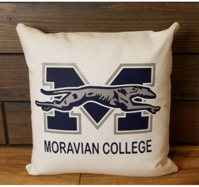 college motif pillow
