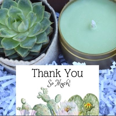 thank you small succulent basket