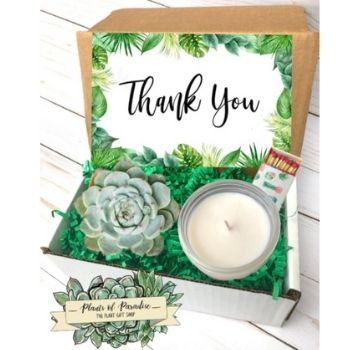 small gift box with succulent, candle and matchbox